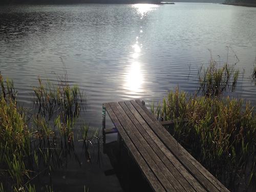 jezioro-przywidz